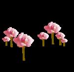 «Oh_Rose»  0_87873_6af4e50f_S