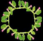«whitebell flowers»  0_879c0_57f81f2e_S