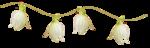 «whitebell flowers»  0_879d5_3227ef67_S