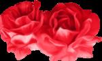 «true love»  0_87ef5_daad5e16_S
