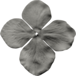 jss_oohhlala_flower 1 gray dark.png