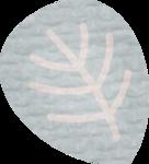 «RIVER_ROSE_5_KIT» 0_89309_17d29a7c_S