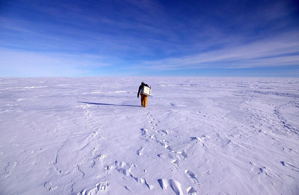 28. Антарктический ледяной щит является крупнейшим на нашей планете и превосходит ближайший по разме