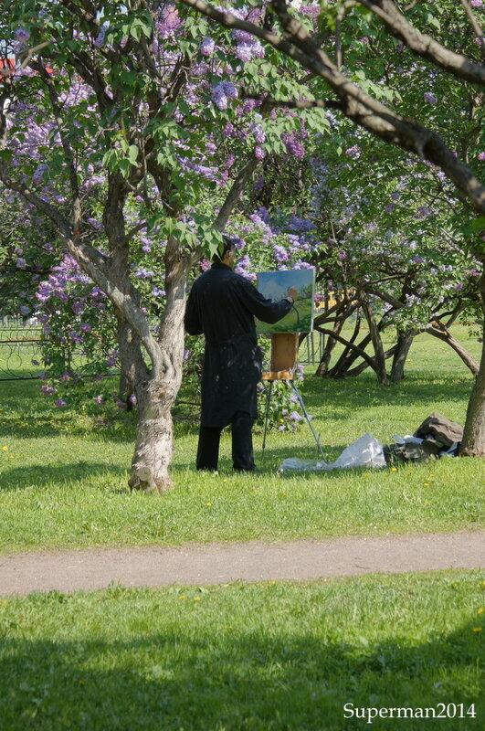 В Сиреневом саду