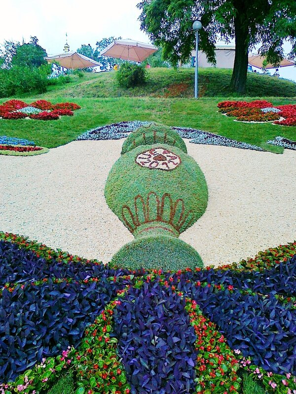 Кубок УЕФА в центре цветочной композиции
