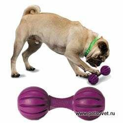 http://img-fotki.yandex.ru/get/6312/44140293.4/0_711f6_f1ef4194_M.jpg