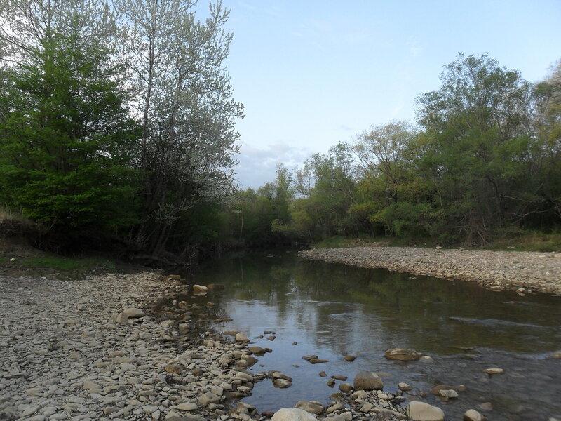 Утром у реки, апрель 2012