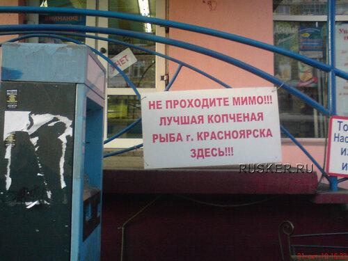Лучшая рыба Красноярска