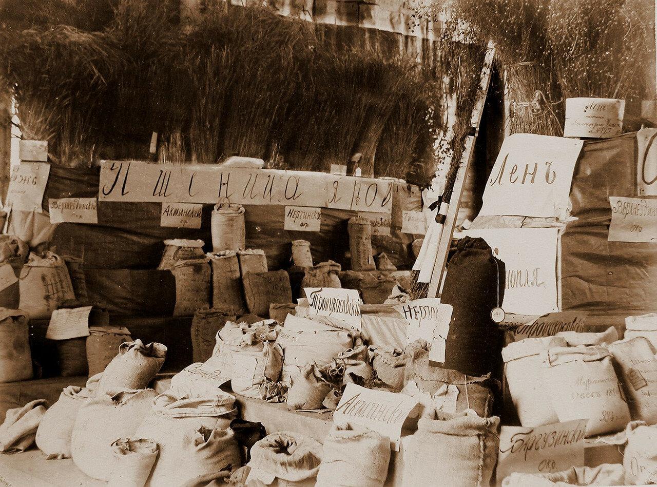 08. Вид части сельскохозяйственных экспонатов в одном из павильонов