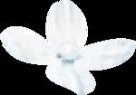 NatashaNaStDesigns_WiterFairytale_flower5.png
