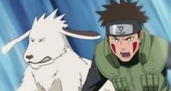 Наруто Хроники 266 эпизод смотреть, скачать (Naruto Shippuuden)