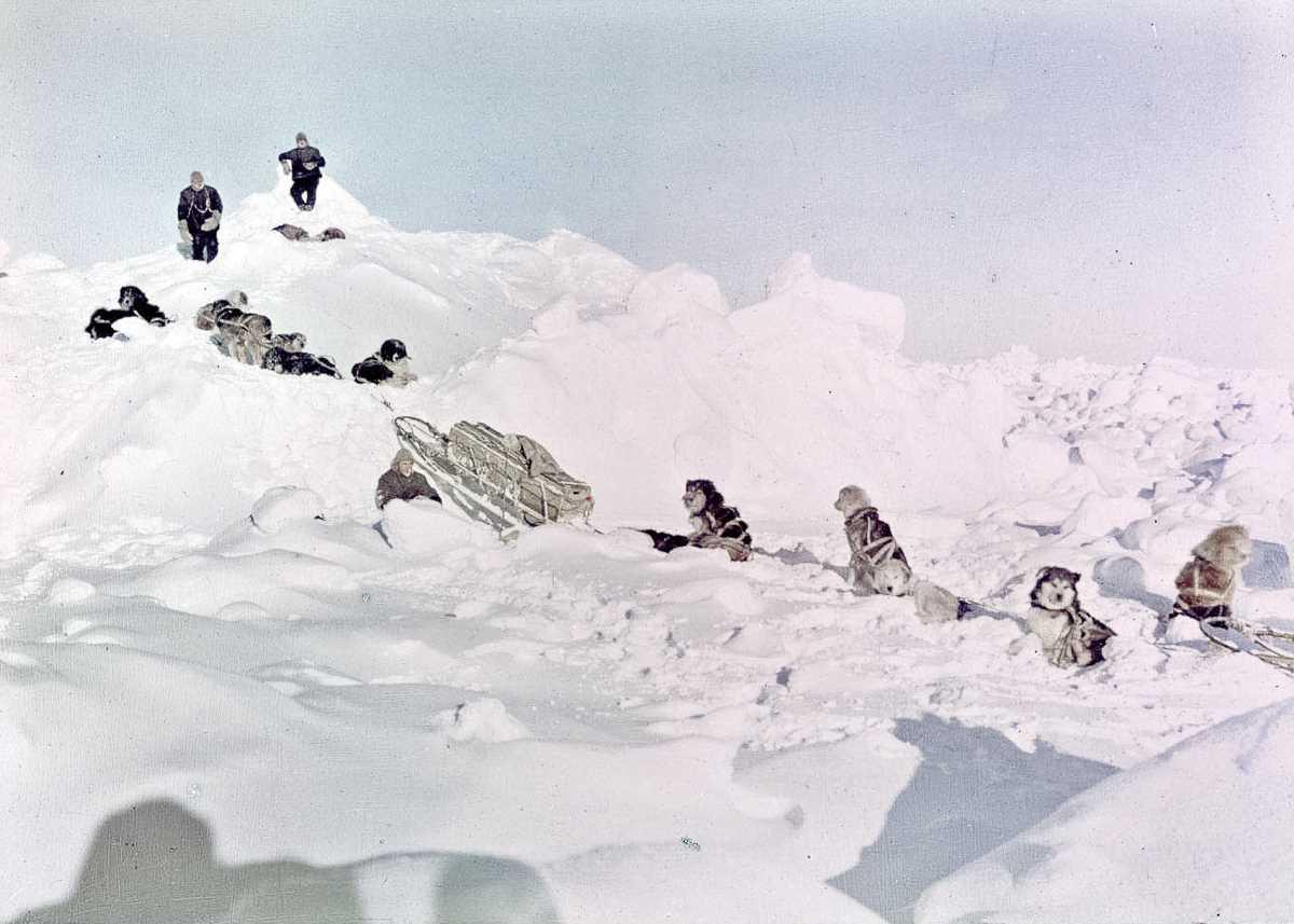 44. Собаки команды ищут выход на землю среди льдов.