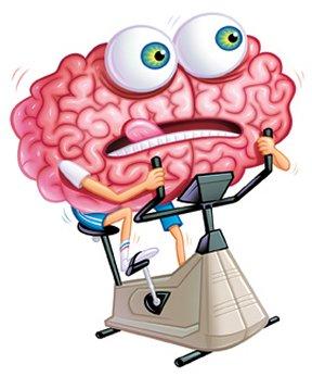Тренажер мозга | Компьютерная игра