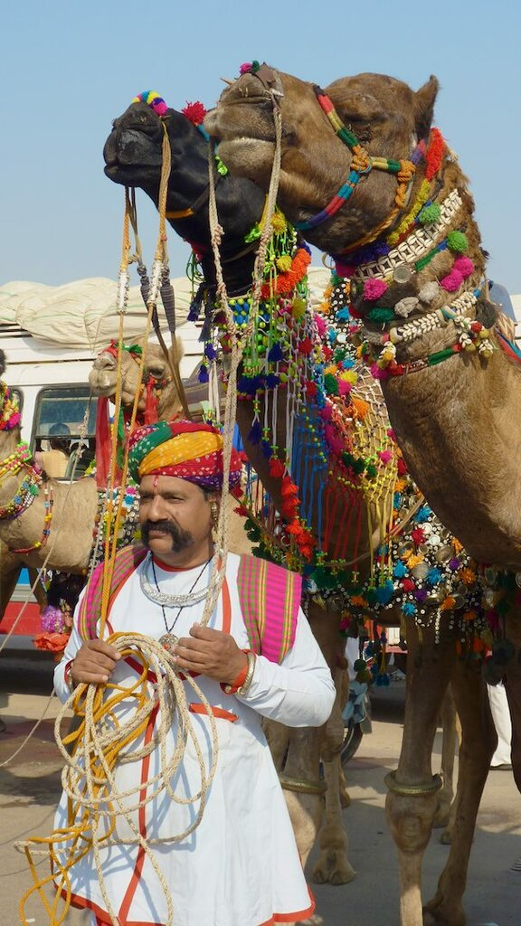 Bikaner Camel Festival 2009 Photo: Steve Hoge