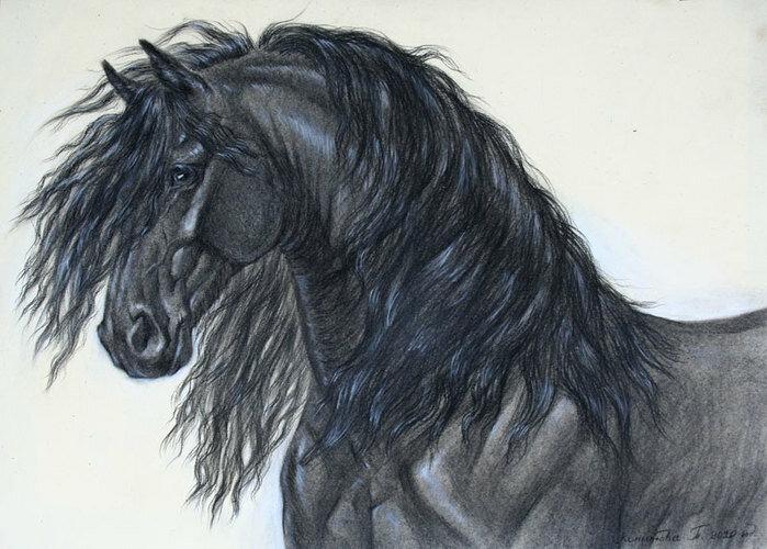 рай на земле возле лошади везде!  Конники страшная СИЛА!