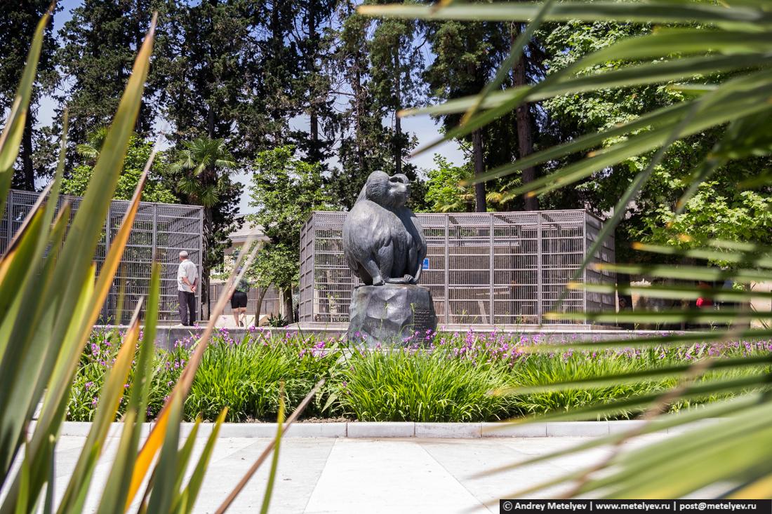 памятник в обезьяньем питомнике