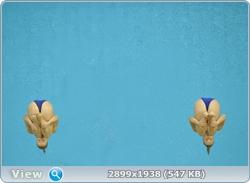 http://img-fotki.yandex.ru/get/6314/13966776.104/0_881bf_d83c19a7_orig.jpg
