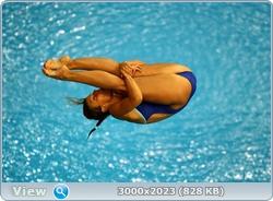 http://img-fotki.yandex.ru/get/6314/13966776.104/0_881dd_d8aa947b_orig.jpg