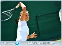 http://img-fotki.yandex.ru/get/6314/13966776.fe/0_87f44_77c31314_orig.jpg