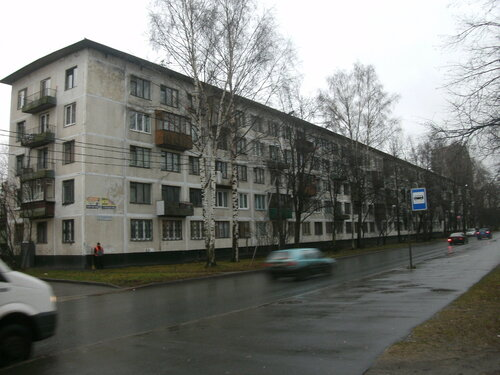 Меньшиковский пр. 5к1