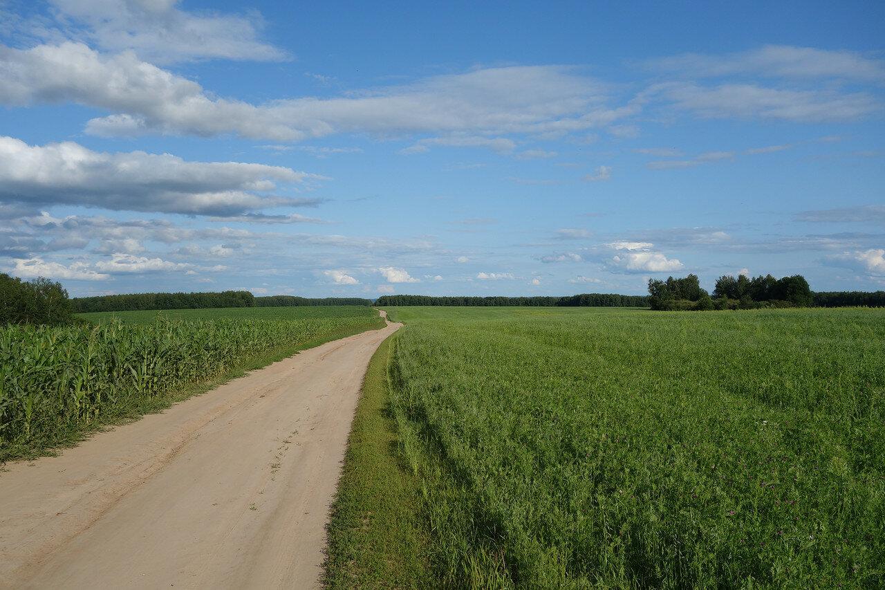 кукуруза и горох