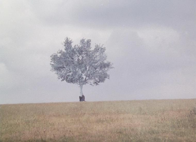 1988 - Пейзаж в тумане (Тео Ангелопулос).jpg
