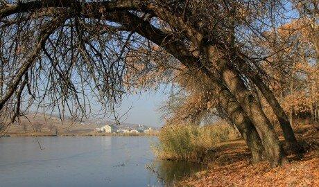 Эти выходные в Молдове будут аномально тёплыми