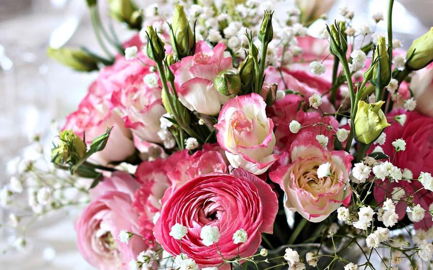 Цветы Букеты Фото Обои трудящийся стол