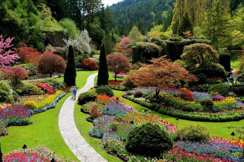 Сады Бутчартов— группа садов, расположенных всамом сердце Канады. ВначалеXX века представители с