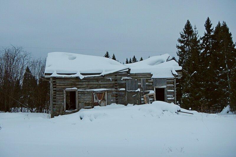Заброшенный деревянный дом с провалившейся крышей и выбитыми окнами