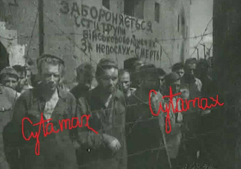 Львовская цитадель. Запрещается есть трупы.jpg