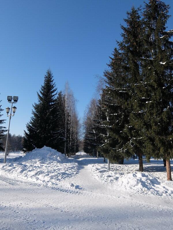 Междуреченск - Ели