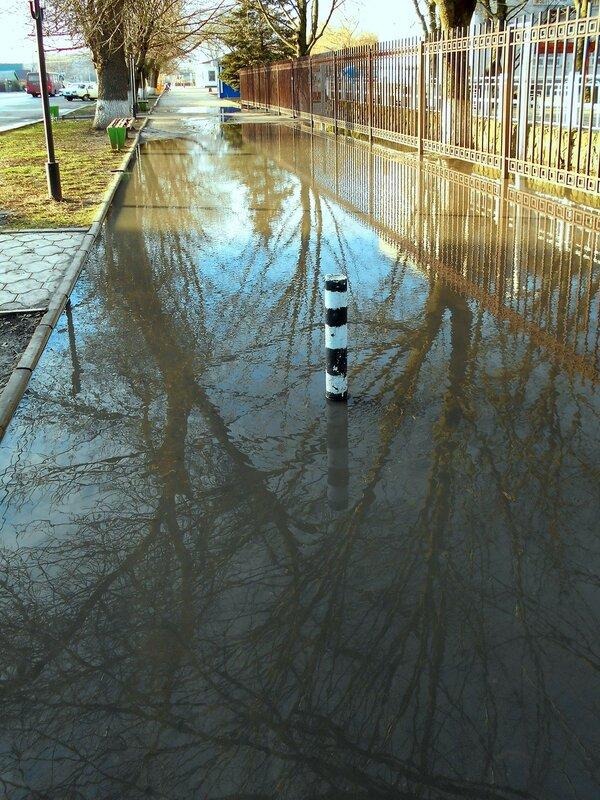 В окне февральских студёных вод ... DSCN3748.JPG