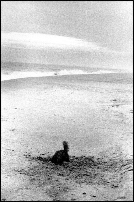 East Hampton, New York. 1997.jpg