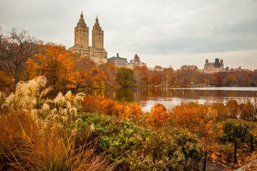 Осень в Центральном парке Нью-Йорка