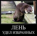953a01f9dda36687b48e556d3ab46c72_h-12058.jpg
