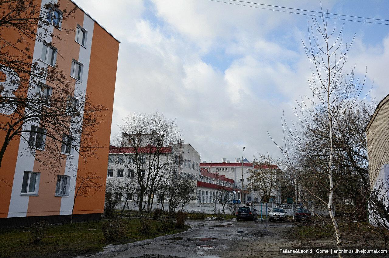 Улица Сосновая. Гомель