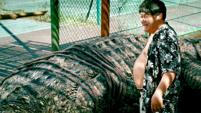 Гигантский крокодил пойман в Австралии