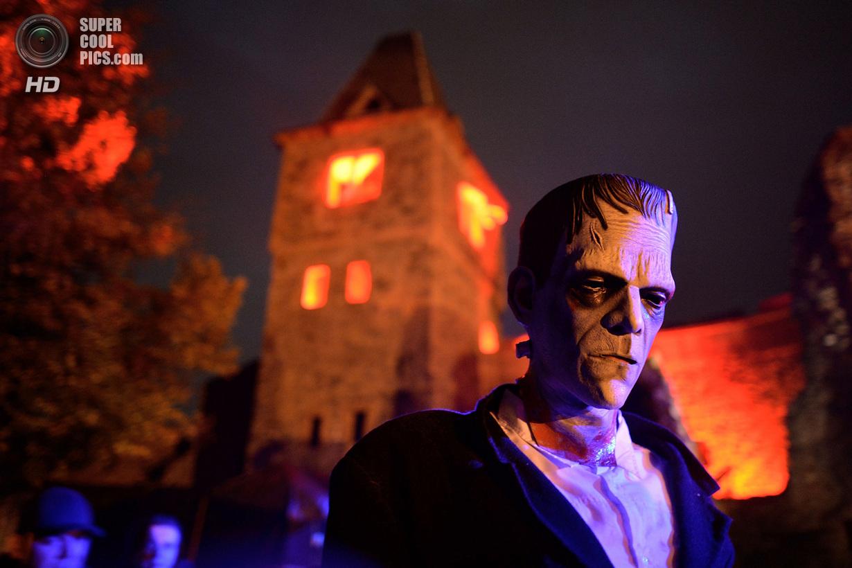 Вечеринка у замка Франкенштейна (21 фото)