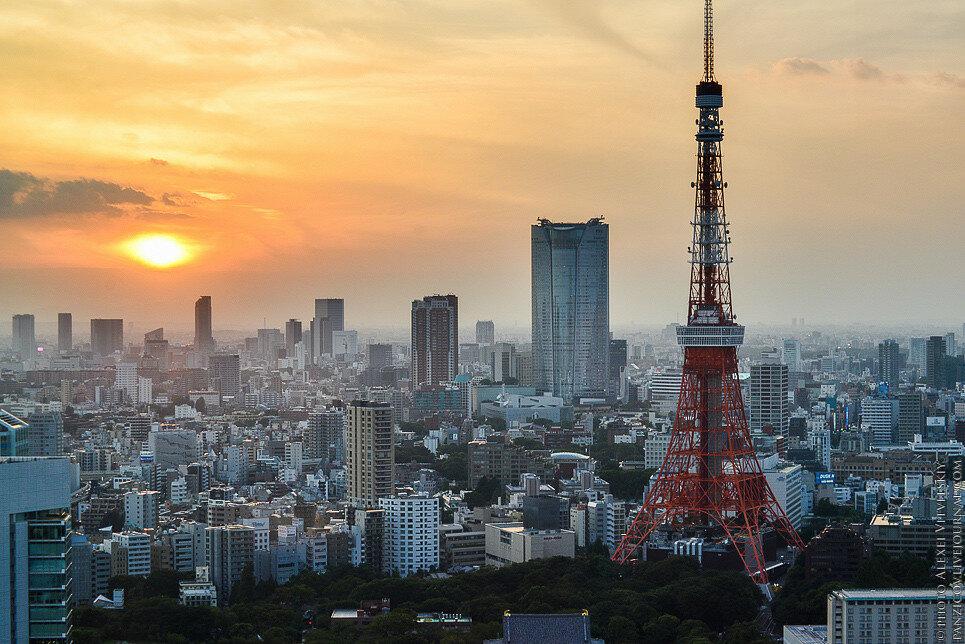 WIAL_JAPAN-0.jpg