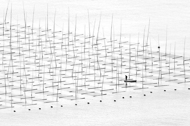Tugo Cheng, China. Shortlisted, Open Competition, Travel. A fisherman is farming the sea in between