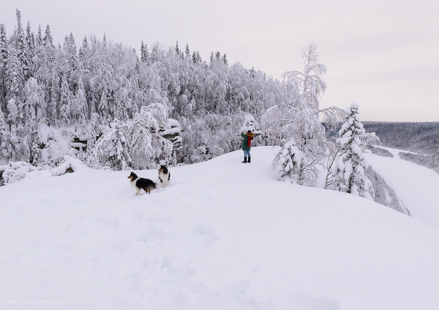 Фотография 24. Катя и собаки на вершине камня Ветлан. Отчет о походе выходного дня зимой. Путешествие по Пермскому краю на автомобиле. 1/500, 0.33, 8.0, 1000, 24.