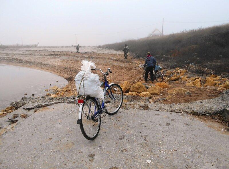 У хутора приморского, в утро туманное ... DSCN4372.JPG