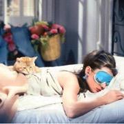 Одри и кот
