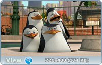 Пингвины Мадагаскара: Операция отпуск / Penguins Of Madagascar: Operation Vacation (2012) DVDRip