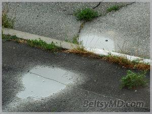 Долгожданный дождь в Бельцах