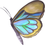 NLD Butterfly 2.png