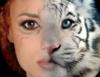 Красивые девушки и...дикие кошки