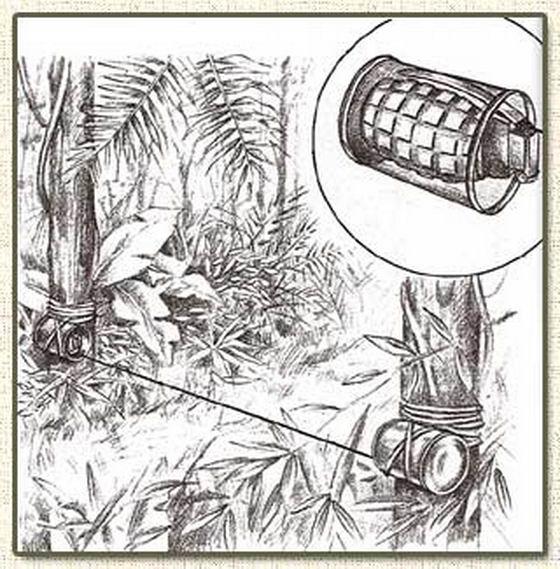 0 7ab1d 278de71 orig Тоннели и ловушки вьетнамских партизан