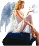 a anges (246).png
